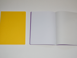 Main Lesson Book in Yellow with Onion Skin 2