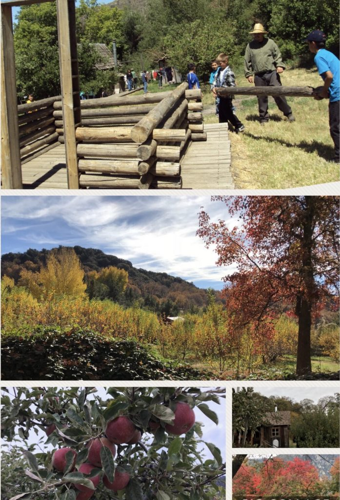 Frontier Log Cabin Adventure at Riley's Apple Farm